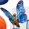 De gama alta loco Live insectos venta