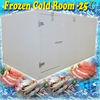 Outdoor freezer room with fire retardent