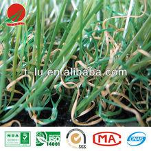 Man-made grass, PP back,PE Yarn,for garden,football, landscape,leisure