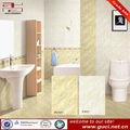 Cozinha telha cerâmica da parede, banheiro telha cerâmica da parede