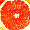 Factory Supply Organic Grapefruit Seed Extract