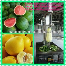 Low cost Large Pumpkin/Papaya/ Water Melon/Fruit Peeling Machine with good effect