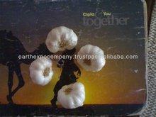 India Fresh Garlic Manufacturer
