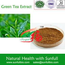 green tea extract organic/tea polyphenol