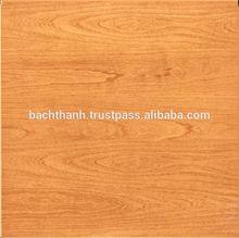 Glazed ceramic floor Tiles- glossy/matt surface PQ4411