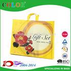 2014 New Design and Favorable Price PP Non Woven Bag,Shopping Bag