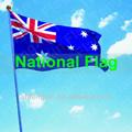 Impresión de pantalla de seda de la bandera nacional