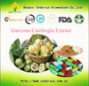 High Quality Garcinia Cambogia Extract Capsule 60%