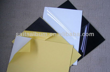 cold binding pvc media for photo book