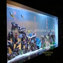 clear acrylic aquarium