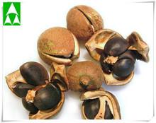 tea seed meal,tea seed,tee seed powder