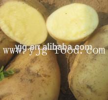 2014 nuevos cultivos de holanda papa fresca 100-250g