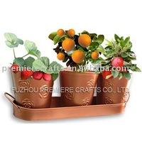Garden kitchen flower pot planter with tray