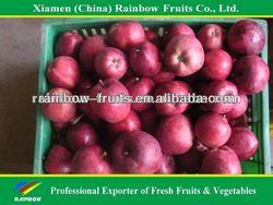 Fresh Huaniu Apple