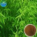 Puro natual de bambu extrato de folhas de/flavona, interno de éster, sílica