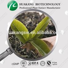 High quality China Black tea extract powder anti oxidant