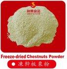 Freeze-dried Chestnut Power--the best Quality chestnut flour