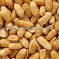 sabor de amendoim torrado kernel amendoim salgado