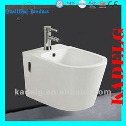 Western Style White Combination Toilet Bidet