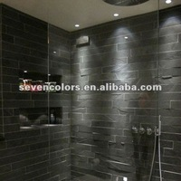 IP65 Waterproof LED Shower Light for Bathroom (SC-C102B)