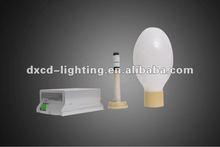 Global Induction Lamp Bulbs 240v 15w-165w