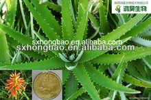 100:1 Aloe barbadensis Miller Aloe Vera P. E.