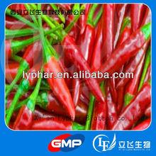 High Quality Chilli extract - Capsaicin powder