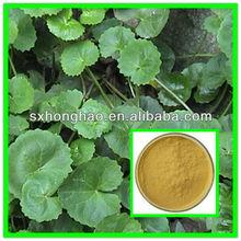 Premium Grade Total triterpenes 40% HPLC Centella Asiatica Extract