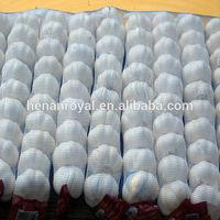2014 Mesh bags packed fresh garlic