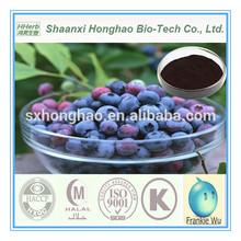 Chinese Bilberry Extract 20% Anthocyanidins Botanical Source Vaccinium Uliginosum L.