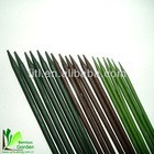 Natural supporting bamboo flower stick