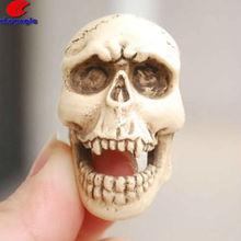 De la decoración del cráneo, Decoración esqueleto