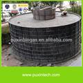 esterco de vaca tratamento da usina de biogás para gerar eletricidade