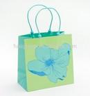 Newly printed cheap custom shopping paper bags
