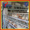 Professional Automatic Galvanized Layer Chicken Cage (ISO9001)