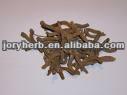 Dang gui wei- radix angelicae sinensis/extremite