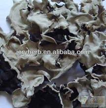 Black Wood Ear Extract Powder