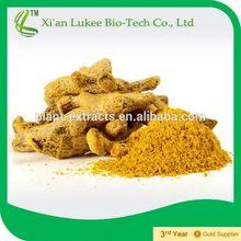 Natural curcumin extract turmeric powder,arthritis prevention 95% curcuminoids,factory supply turmeric root extract/curcumin
