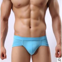 Modal mesh breathable underwear man briefs antibacterial men's low rise briefs(China (Mainland))