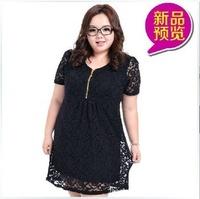 Hot Sale, Black Womens Ladies Loose Korean Chubby Short Sleeve Knitting  Lace T-shirt, Free & Drop Shipping