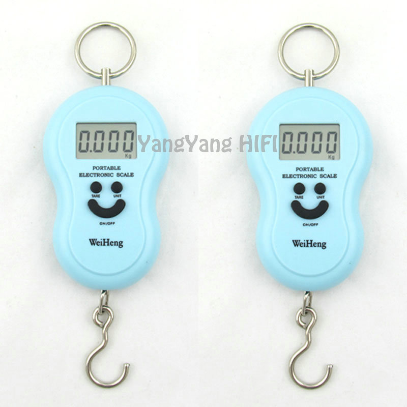 45kg Double Precision Hook Pocket Electronic Fishing Hanging Weight Digital Scale brue(China (Mainland))