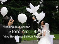 300pcs/lot white biodegradable pigeons balloon Helium Balloons wedding decoration wedding doves  favors and gifts