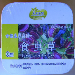 Box of the magic grass of queerness series of seeds color box(China (Mainland))