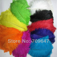 Wholesale 100pcs/lot Quality Natural OSTRICH FEATHERS 12-14 inch 30-35cm Color Selection FREESHIPPING