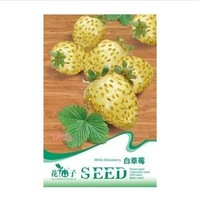 Free shipping 1packs/lot (100 seeds)White Strawberry Fresh seeds, Germination 95%+, seeds of a strawberry for DIY home garden