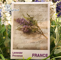 Provence Gorgeous Landscape Flowers of French city Lavender greeting Postcard/Postcards Gift/set Free Shipping 30 pcs