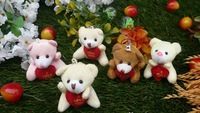wholesale randomly mix color sent  Bear hug heart pendant cartoon bouquet doll  cute teddy bear plush accessories,PT3012