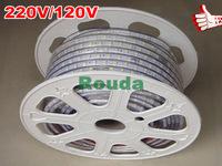 3528 led strip 50M 220V 4W/M 60LEDs/M IP66 Waterproof warm white/white LED Light Strip DD10 + Controler