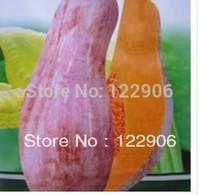 SE1023 Free shipping 50 Seeds Green Sweet Healthy Organic Vegetable Pumpkin Seeds