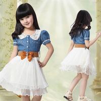 2013 female child one-piece dress clothing 4 5 6 - - - - - 7 8-9-10 11 - 12 summer little girl princess dress